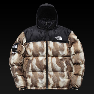 �뽺���̽� X ������ 700 �е�����, Noth Face X Supreme Jacket